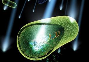 UV dezinfekcija vode - Mehanizam